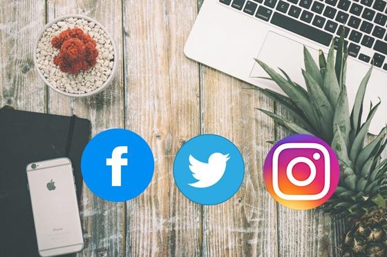 Servicios-Redes-Sociales-Alexistop5