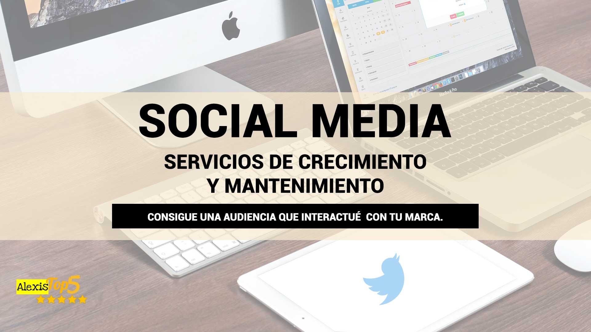 Servicios-de-crecimiento-y-mantenimiento-de-redes-sociales